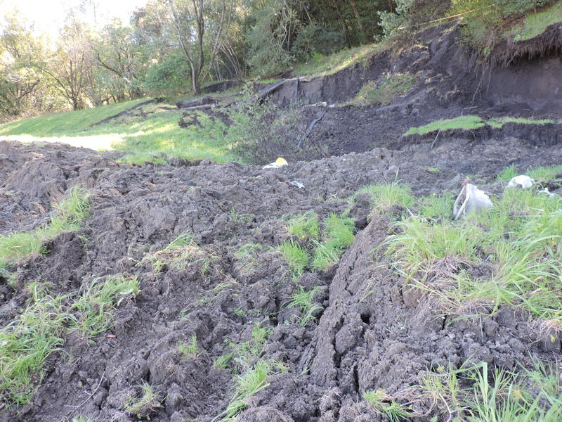 Emergency Landslide Remediation